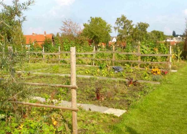Vorschau: Biopark